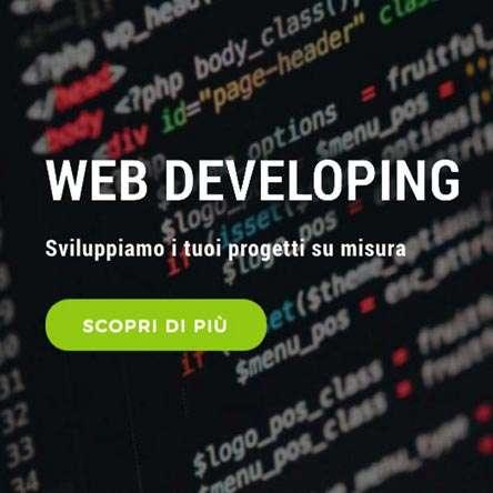 Web developing: sviluppo siti, gestionali e web app personalizzate